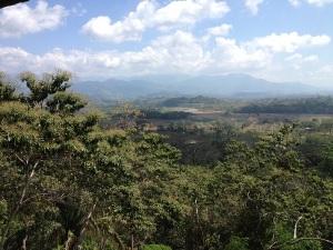 Alazar View 600px