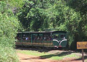 Iguazu-Train-2