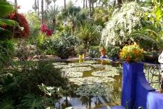 Majorelle Garden Marrakech - Pond