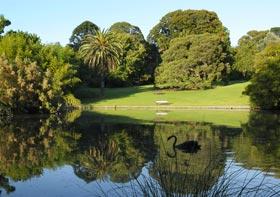 Melbourne Royal Botanic Gardens #1