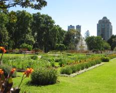 Melbourne Royal Botanic Gardens #2