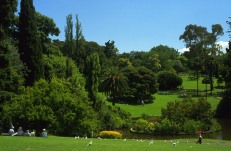 Melbourne Royal Botanic Gardens #3