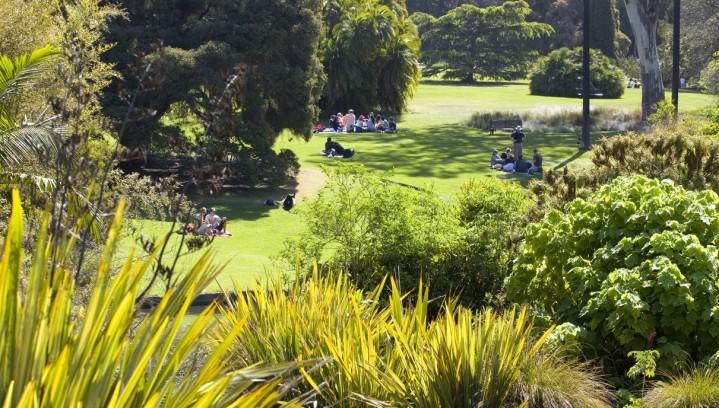 Melbourne Royal Botanic Gardens #4