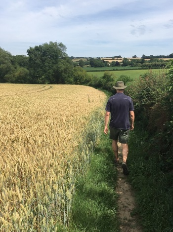 Skirting Wheat on our Hike