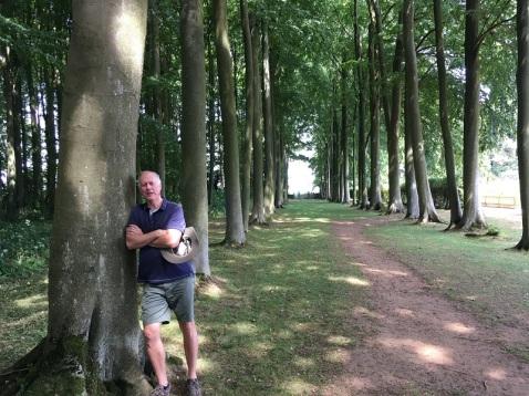 Woods in the Gardens