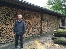 Hellbrunn Behind the Woodshed