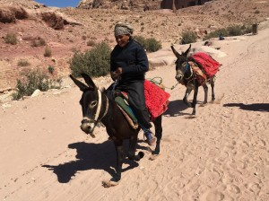 Jordan - Petra - Bedouin Boy Racing Donkey