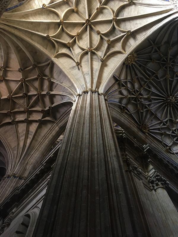 Salamanca Cathedral Pillars Closeup